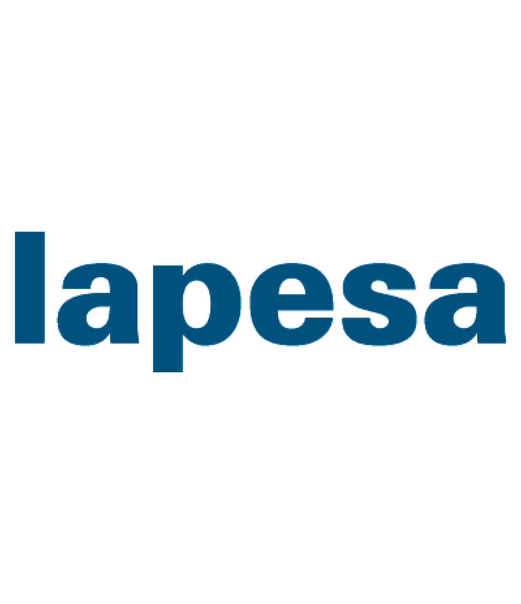 LAPESA GRUPO EMPRESARIAL S.L.